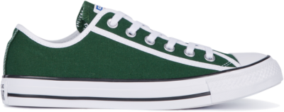 Converse Chuck Taylor All Star Low Top White 163981C