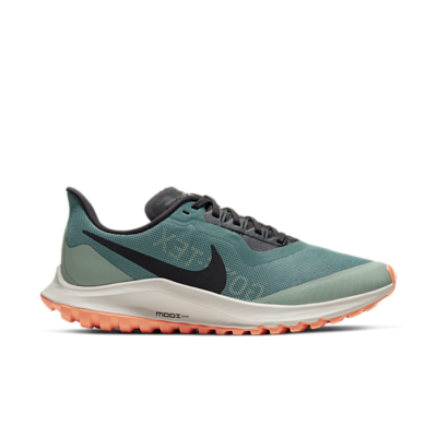 Nike Zoom Pegasus 36 Trail GORE-TEX Groen BV7763-300