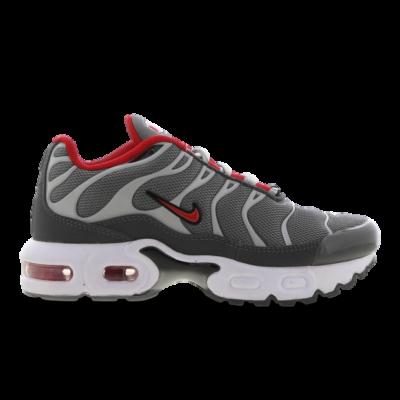 Nike Tuned 1 Grey CD0610-005
