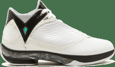 Jordan 2009 White Black 343084-161
