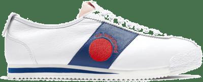 Nike Cortez 72 Shoe Dog Dimension Six Moon CJ2586-101