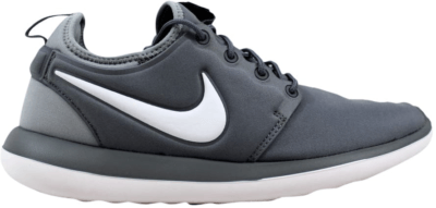 Nike Roshe Two Cool Grey (GS) 844653-004