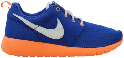 Nike Roshe One Game Royal (GS) Game Royal/White 599728-418