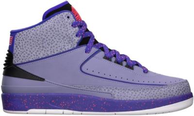 Jordan 2 Retro Iron Purple 385475-553