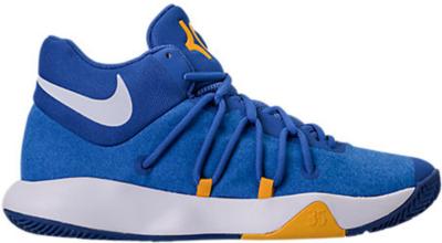 Nike KD Trey 5 V Warriors Royal Blue/White-University Gold 897638-400