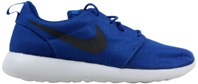 Nike Roshe One Gym Blue/Anthracite Gym Blue/Anthracite 511881-417