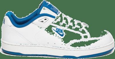 Nike Grandstand II white AA2190 103