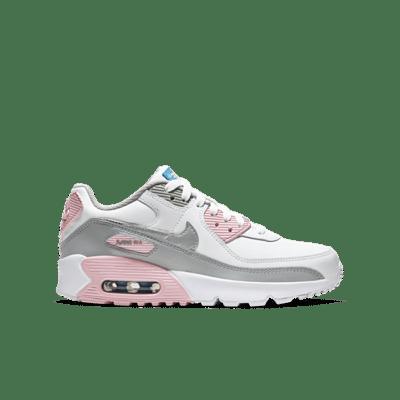 Nike Air Max 90 Grey CD6864-004
