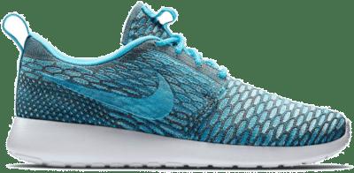 Nike Roshe Run Flyknit Clearwater (W) 704927-003
