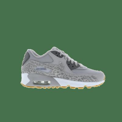 Nike Air Max 90 Grey 897987-004