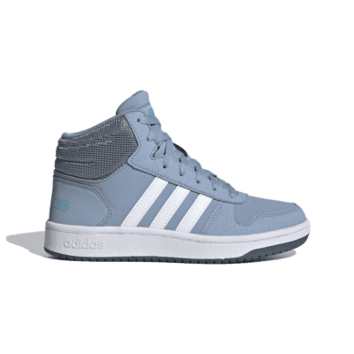adidas Hoops 2.0 Mid Tactile Blue FW3158