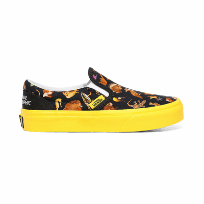 VANS Vans X National Geographic Classic Slip-on Kinderschoenen  VN0A4BUTWK6