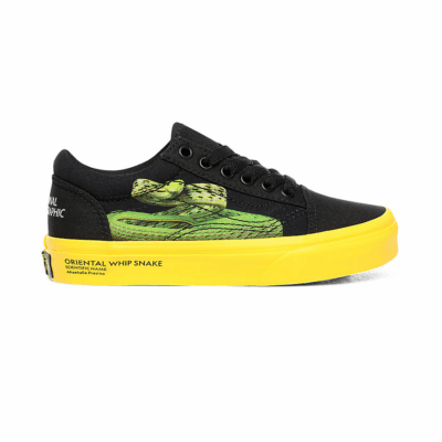 VANS Vans X National Geographic Old Skool Kinderschoenen  VN0A4BUUWK6