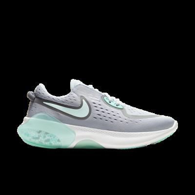 Nike Joyride Dual Run Grijs CD4363-003