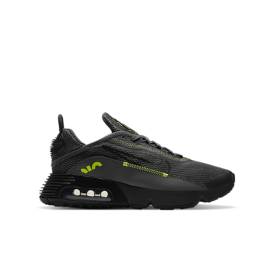 Nike Air Max 2090 Grijs DB2615-001