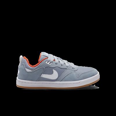 Nike SB Alleyoop Blauw CJ0883-400