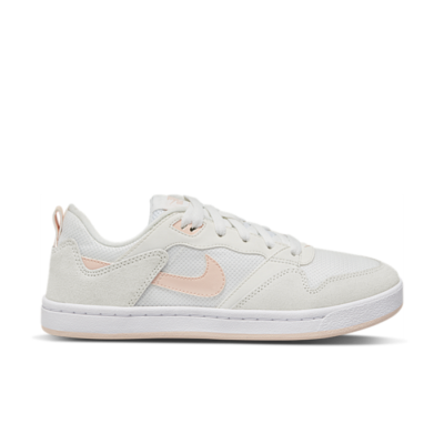 "Nike Alleyoop ""Washed Coral"" CQ0369-101"