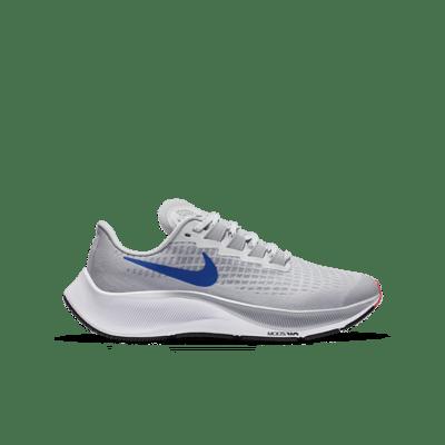 Nike Air Zoom Pegasus 37 Zilver CJ2099-006
