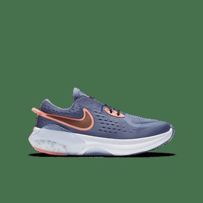 Nike Joyride Dual Run Blauw CN9600-417
