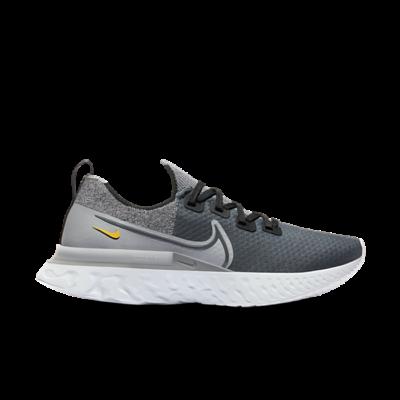 Nike React Infinity Run Flyknit Grijs DA4661-001