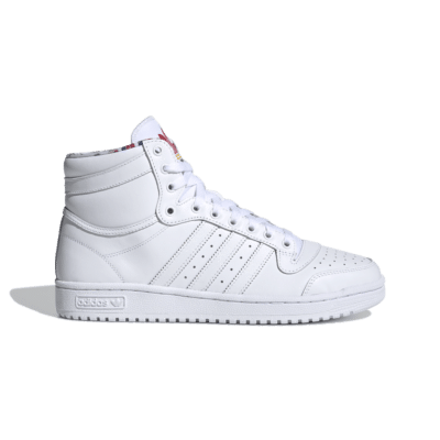 adidas Top Ten Cloud White FY2853