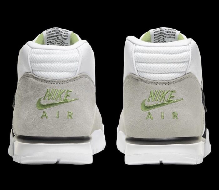 sb Nike Air trainer 1