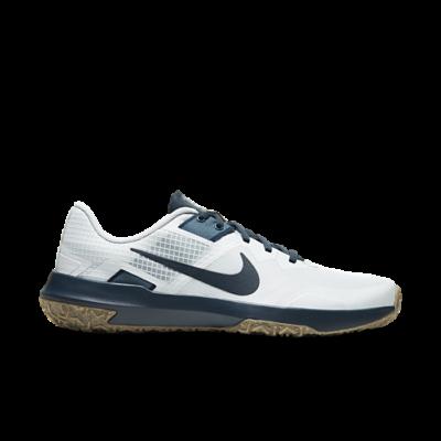 Nike Varsity Compete TR 3 Grijs CJ0813-005