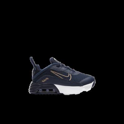 Nike Air Max Blauw CU2092-401