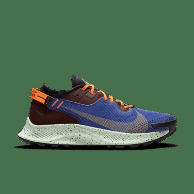 Nike Pegasus Trail 2 Gore-tex Multi CU2016-600