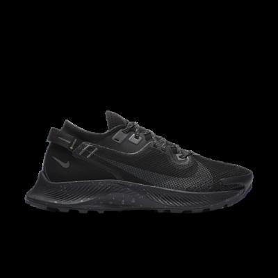 Nike Wmns Pegasus Trail 2 Gore-tex Black CU2018-001