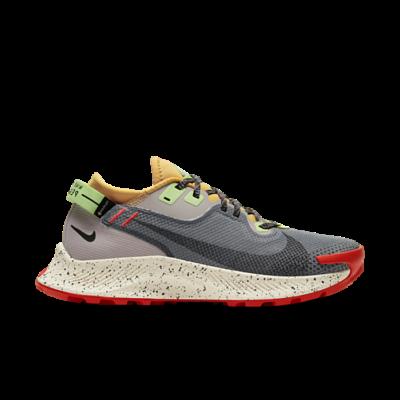 Nike Pegasus Trail 2 Gore-Tex Smoke Grey Bucktan (W) CU2018-002