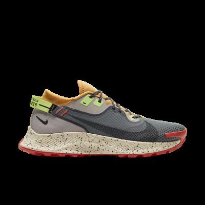 Nike Pegasus Trail 2 GTX 'Smoke Grey Bucktan' Grey CU2016-002