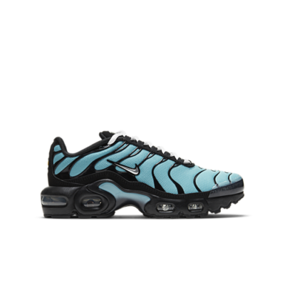 Nike Air Max Plus Blauw CD0609-405