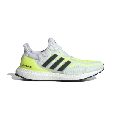adidas Ultra Boost 2.0 Dna White H05248