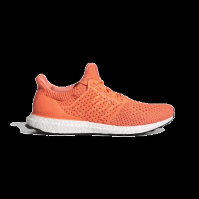 adidas Ultraboost Clima DNA Screaming Orange S42542