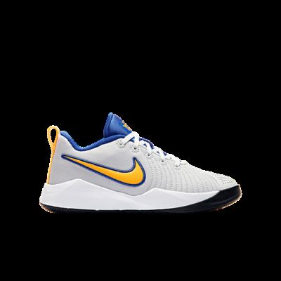 Nike Team Hustle Quick 2 Grijs AT5298-011