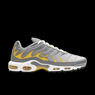 Nike Tuned 1 Grey DD7111-001