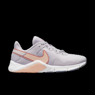 Nike Legend Essential 2 Paars CQ9545-500