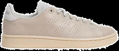 adidas Advantage Dames Sneakers EG3851 bruin EG3851