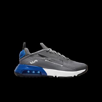 Nike Air Max 2090 Grey CJ4066-015