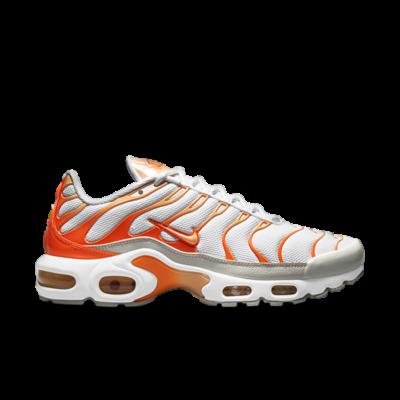 Nike Tuned 1 Essential White DM3033-100