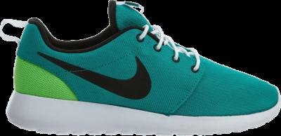 Nike Roshe One 'Neptune Green' Green 511881-309