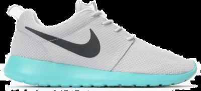Nike Nike Roshe One QS 'Calypso' (2015)  633054-013