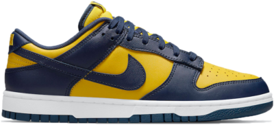 Nike Dunk Low 'Michigan' 2021 Blue DD1391-700