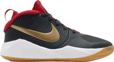 Nike Team Hustle D9 GS 'Dark Smoke Grey Gold' Grey AQ4224-011