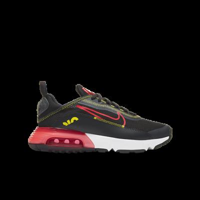Nike Air Max 2090 Grijs CJ4066-010