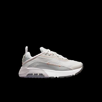 Nike Air Max 2090 Grey CU2093-014
