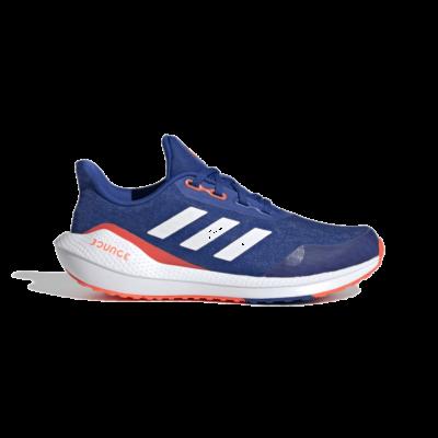 adidas EQ21 Run Royal Blue FX2247