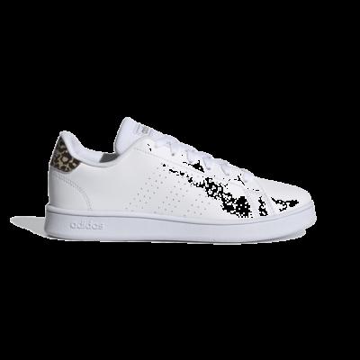 adidas Advantage Cloud White FY8875