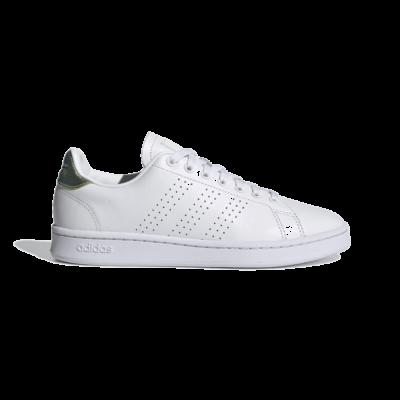 adidas Advantage Cloud White FY8956